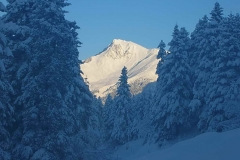 winter016