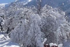winter047