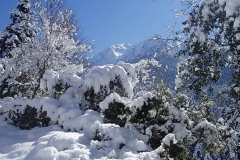 winter048