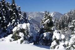 winter052