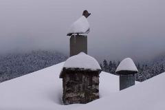 winter064