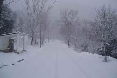 winter079